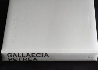 Gallaecia Petrea